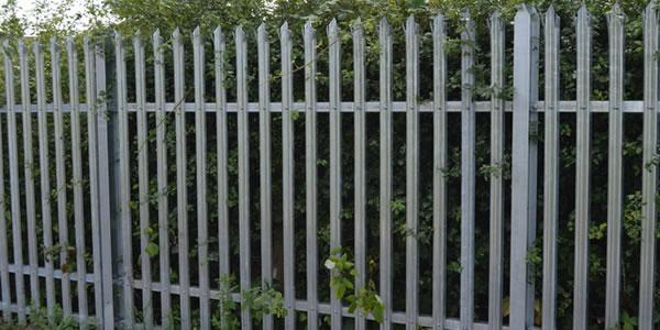 metal palliside fencing
